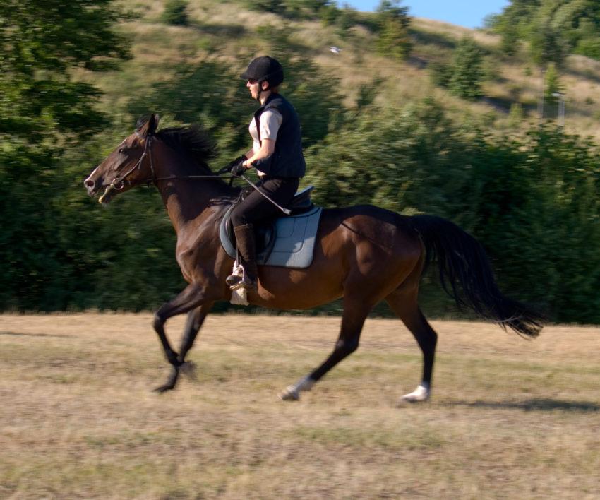Konie pędzą od złego dosiadu i złej ręki
